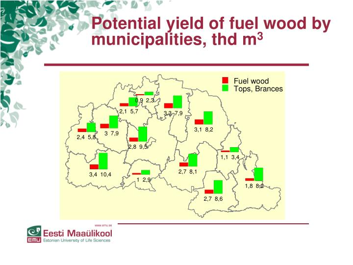 Potential yield of fuel wood by municipalities, thd m