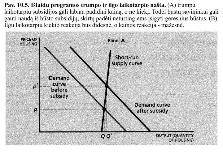 Pav. 10.5. Išlaidų programos trumpo ir ilgo laikotarpio našta.