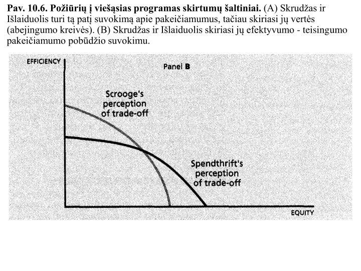 Pav. 10.6. Požiūrių į viešąsias programas skirtumų šaltiniai.