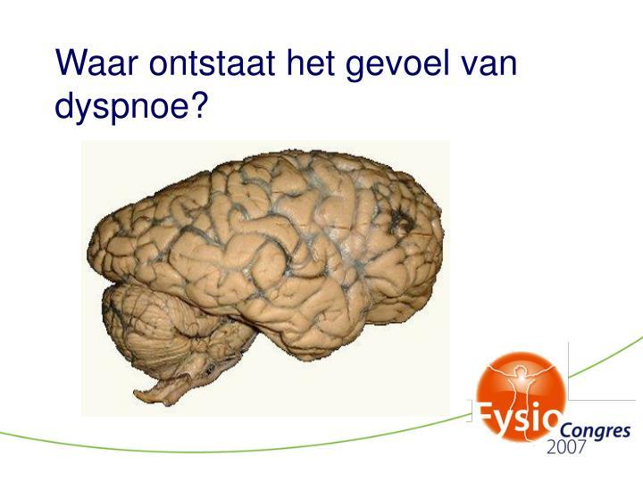 Waar ontstaat het gevoel van dyspnoe?