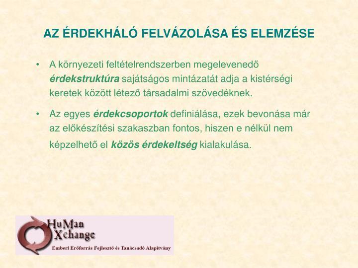 AZ ÉRDEKHÁLÓ FELVÁZOLÁSA ÉS ELEMZÉSE