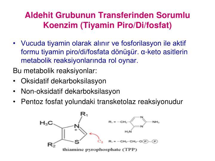 Aldehit Grubunun Transferinden Sorumlu Koenzim (Tiyamin Piro/Di/fosfat)