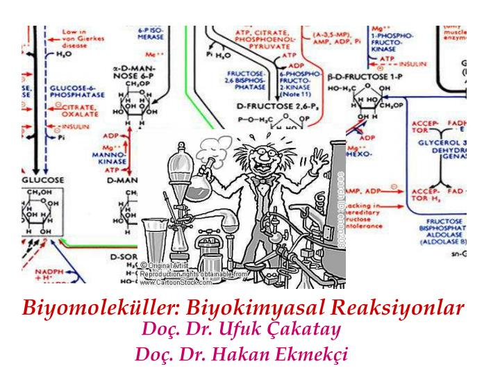 do dr ufuk akatay do dr hakan ekmek i