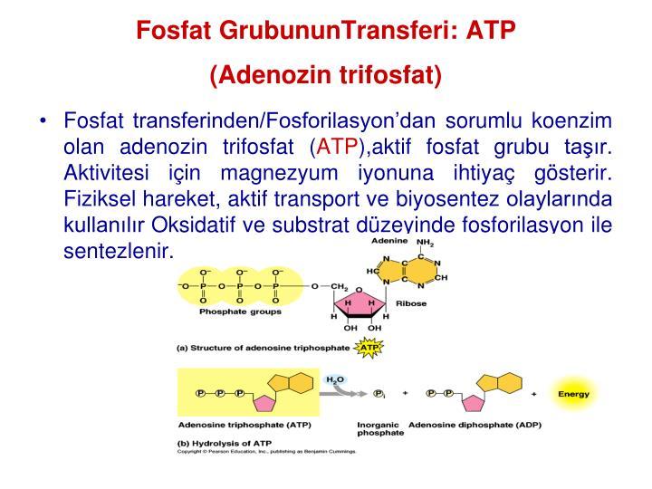 Fosfat GrubununTransferi: ATP