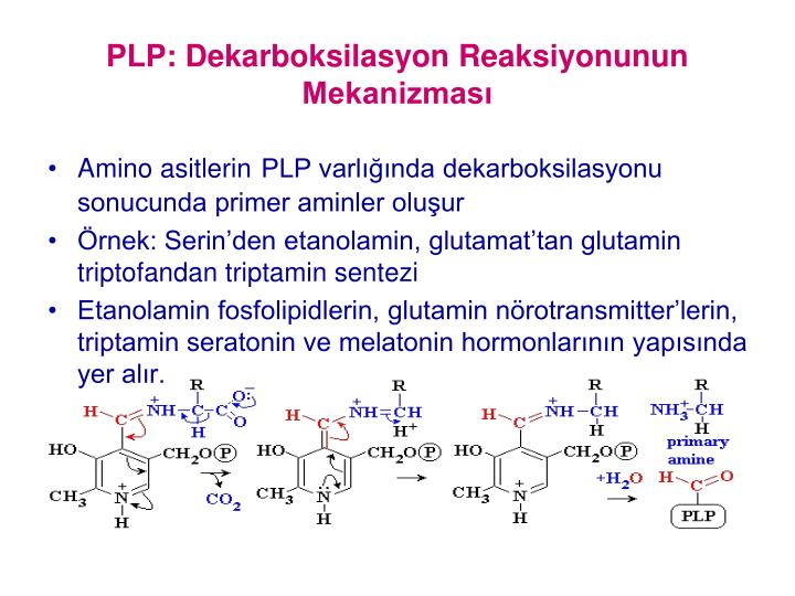 PLP: Dekarboksilasyon Reaksiyonunun Mekanizmas