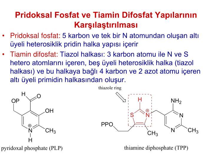 Pridoksal Fosfat ve Tiamin Difosfat Yaplarnn Karlatrlmas