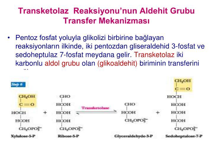 Transketolaz  Reaksiyonunun Aldehit Grubu Transfer Mekanizmas