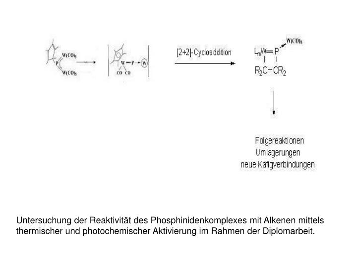 Untersuchung der Reaktivität des Phosphinidenkomplexes mit Alkenen mittels thermischer und photochemischer Aktivierung im Rahmen der Diplomarbeit.