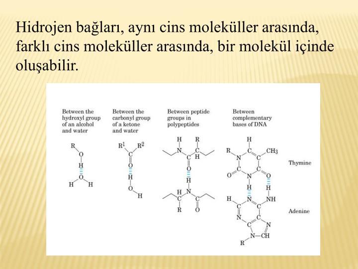 Hidrojen balar, ayn cins molekller arasnda, farkl cins molekller arasnda, bir molekl iinde oluabilir