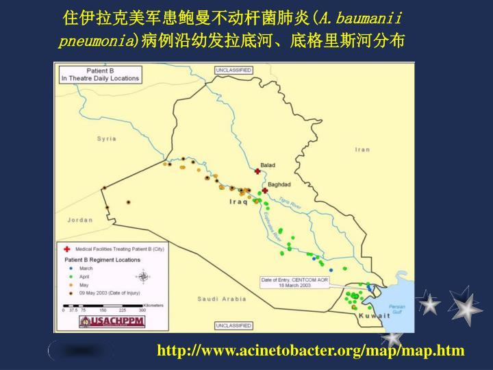 住伊拉克美军患鲍曼不动杆菌肺炎