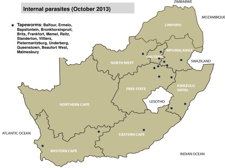 Internal parasites (October 2013)