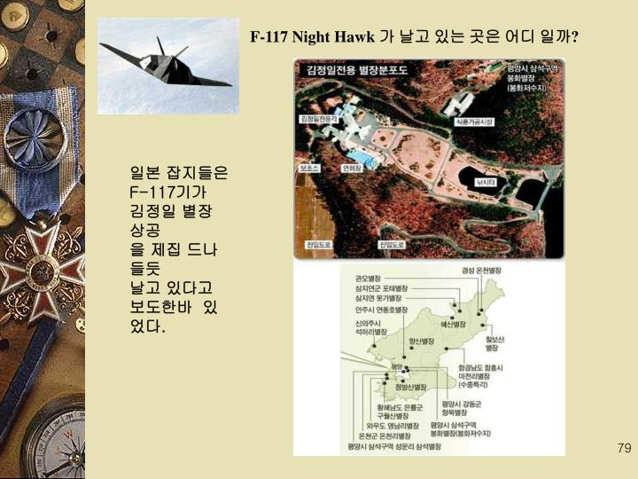 F-117 Night Hawk