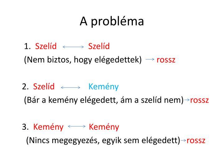 A probléma