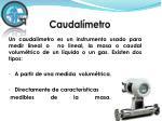 caudal metro