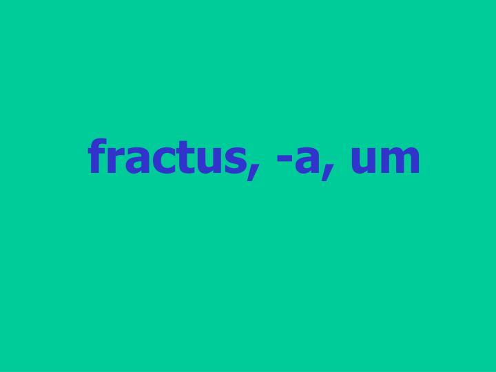 fractus, -a, um