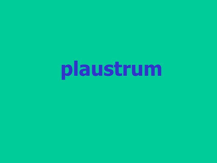 plaustrum