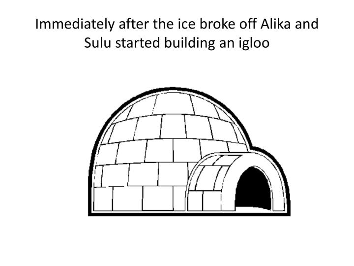 Immediately after the ice broke off Alika and Sulu started building an igloo