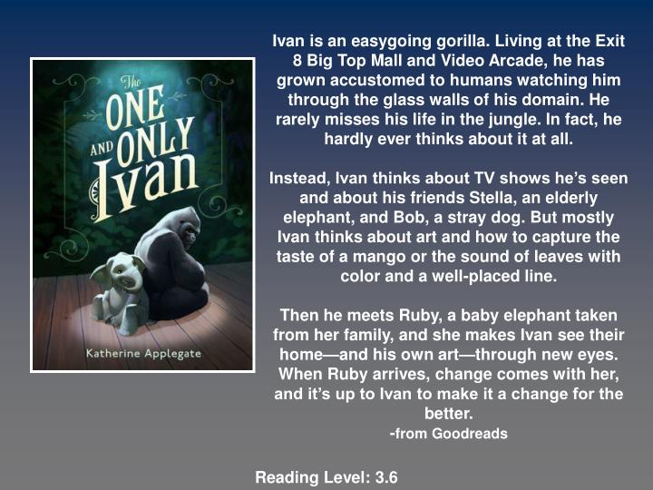 Ivan is an easygoing gorilla. Living at the Exit 8 Big Top Mall and Video Arcade, he has grown accustomed to humans watching him through the glass walls of his domain. He rarely misses his life in the jungle. In fact, he hardly ever thinks about it at all.