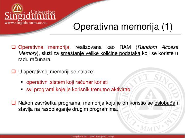Operativna memorija (1)