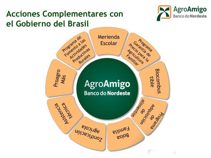 Acciones Complementares con el Gobierno del Brasil