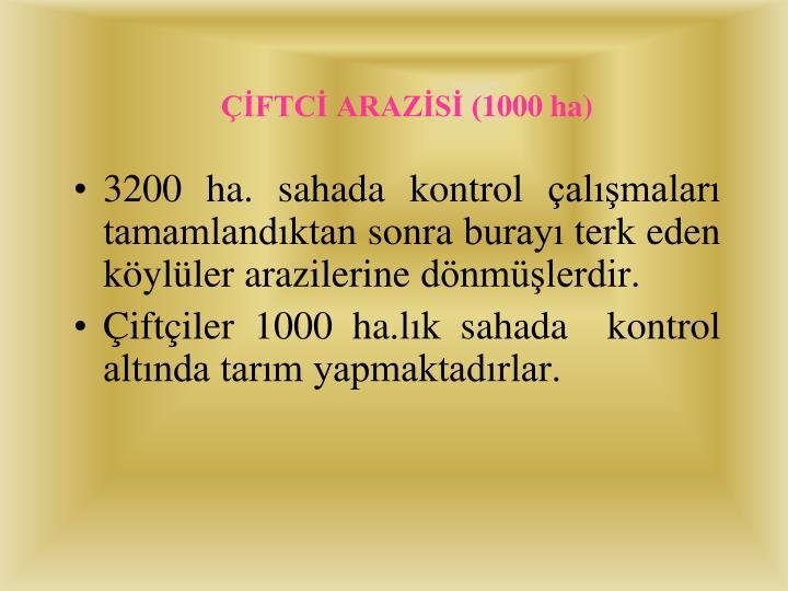 ÇİFTCİ ARAZİSİ (