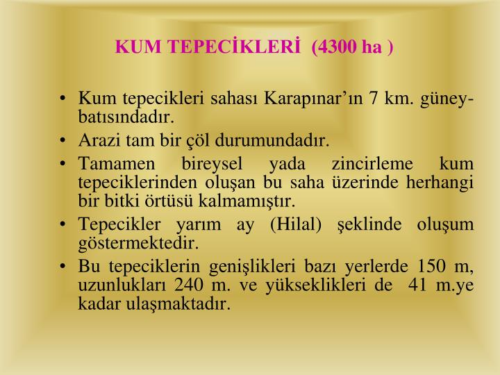 KUM TEPECİKLERİ  (