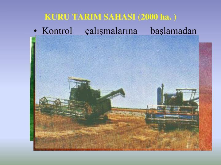 KURU TARIM SAHASI (