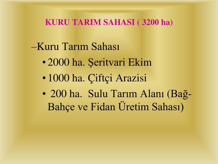 KURU TARIM SAHASI ( 3200 ha)