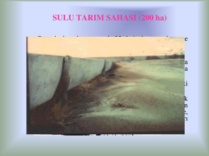SULU TARIM SAHASI (
