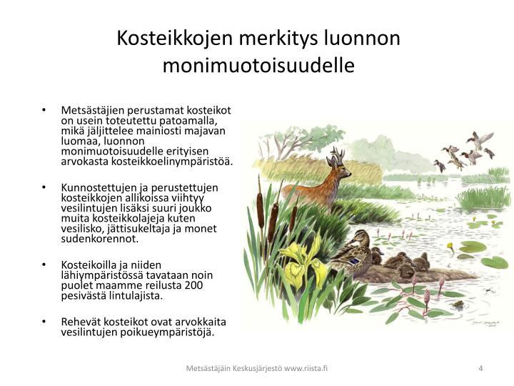 Kosteikkojen merkitys luonnon monimuotoisuudelle