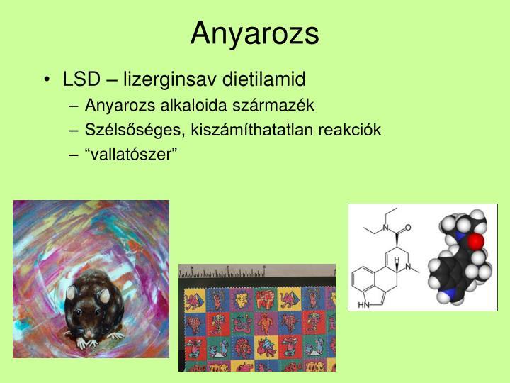 Anyarozs