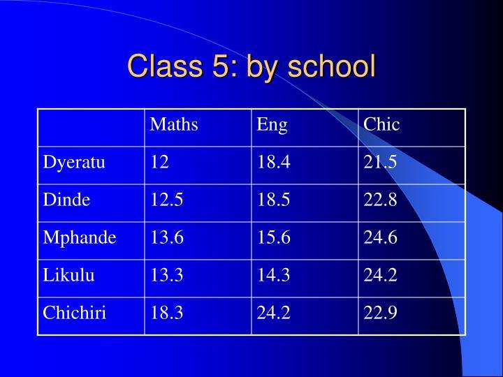 Class 5: by school