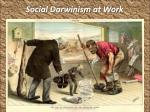 social darwinism at work1