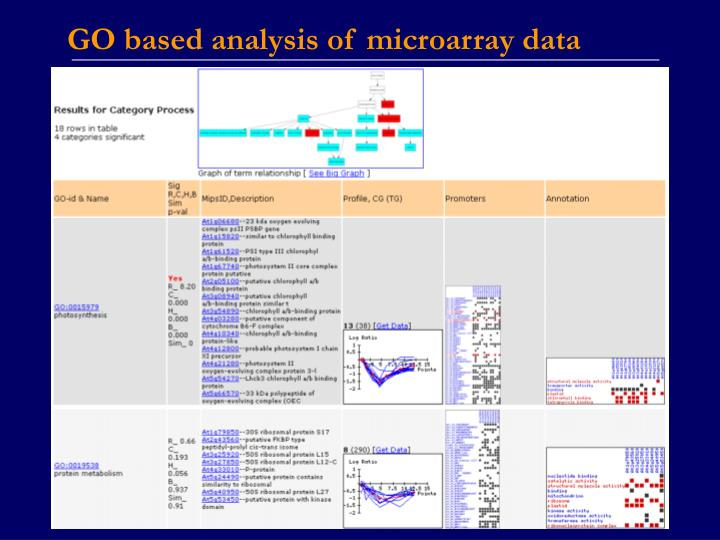 GO based analysis of microarray data