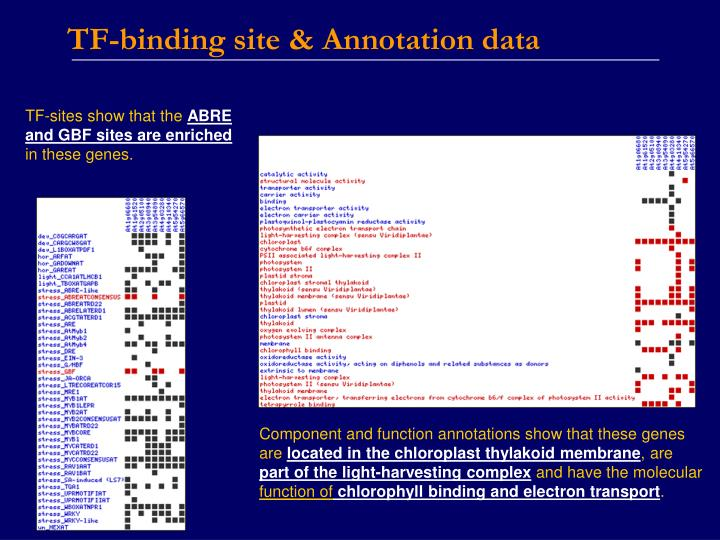 TF-binding site & Annotation data