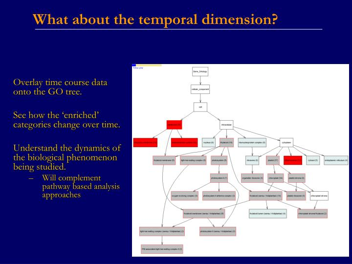 What about the temporal dimension?