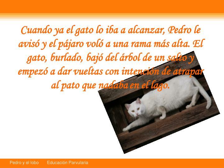 Cuando ya el gato lo iba a alcanzar, Pedro le avis y el pjaro vol a una rama ms alta. El gato, burlado, baj del rbol de un salto y empez a dar vueltas con intencin de atrapar al pato que nadaba