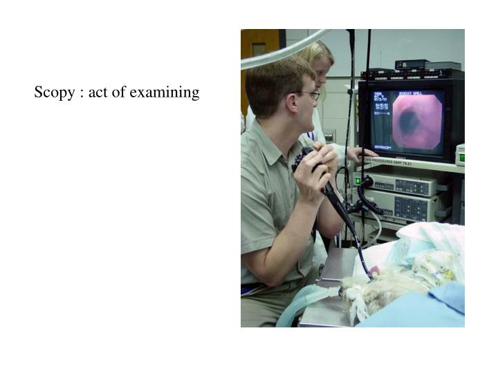 Scopy : act of examining