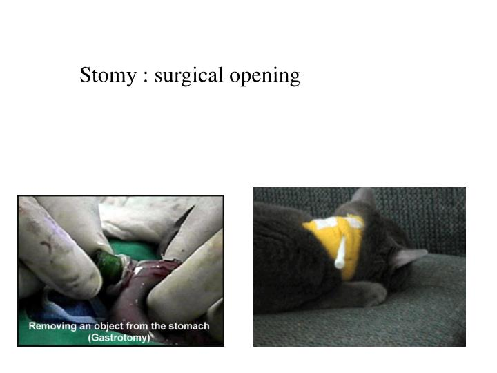 Stomy : surgical opening