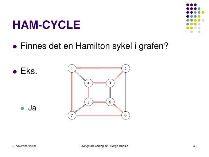 HAM-CYCLE