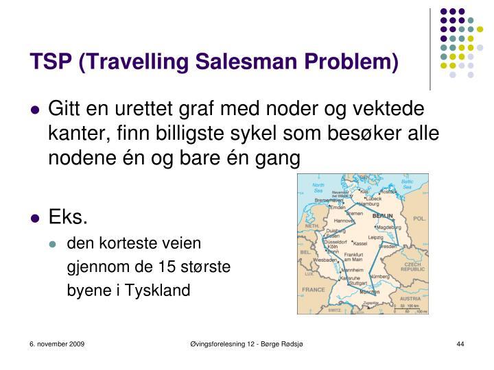 TSP (Travelling Salesman Problem)