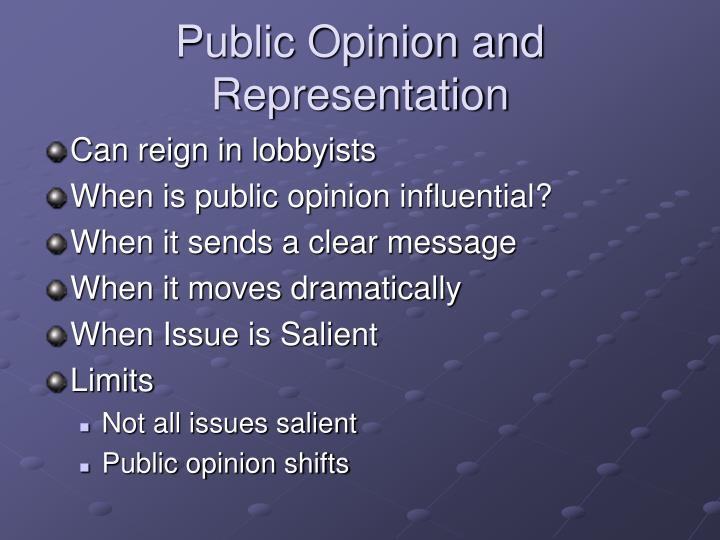 Public Opinion and Representation