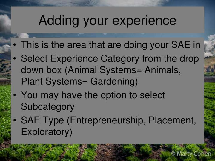 Adding your experience
