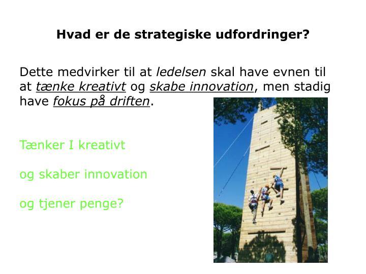Hvad er de strategiske udfordringer?