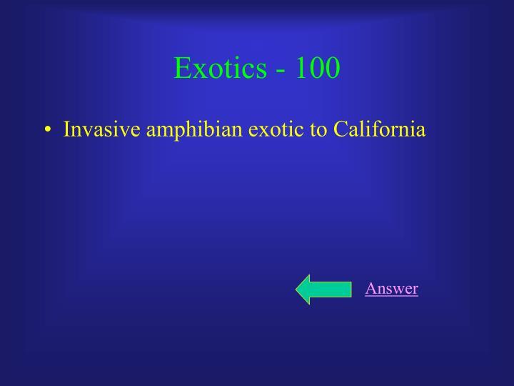 Exotics - 100