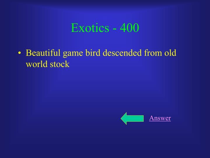 Exotics - 400