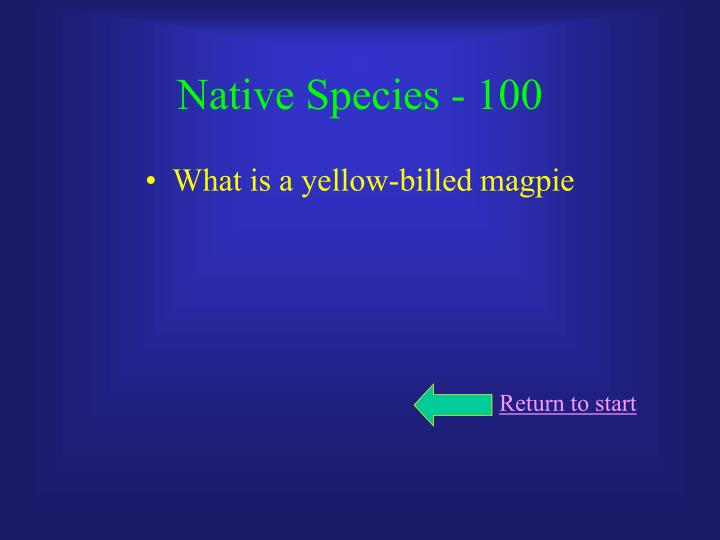 Native Species - 100
