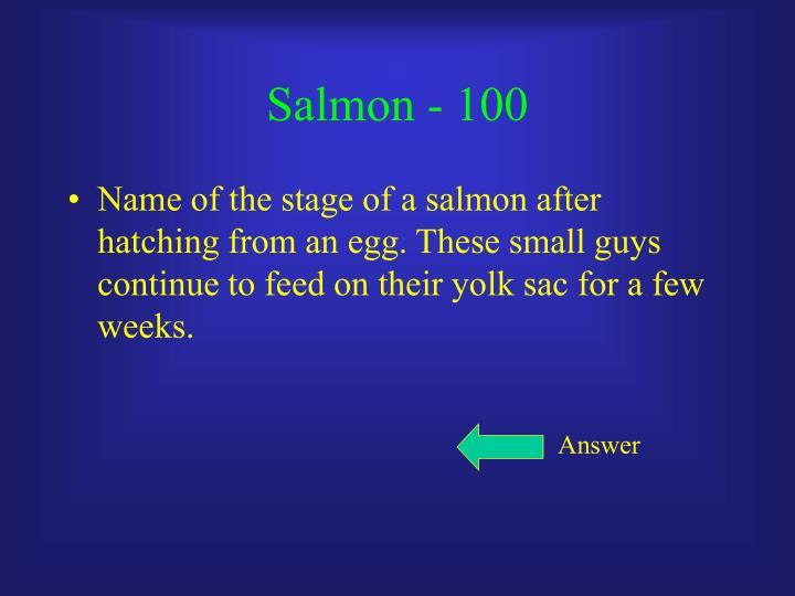 Salmon - 100