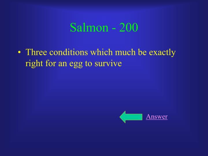 Salmon - 200