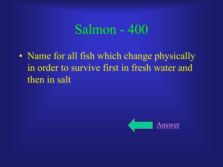 Salmon - 400